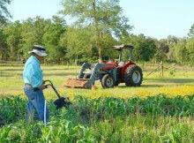 Small farming
