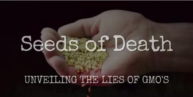 GMO Movie