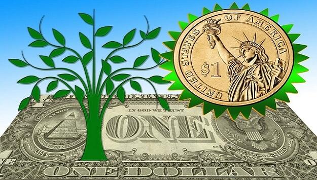 Eco-conscious living on a budget