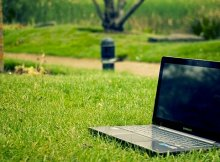 How to help the environment online