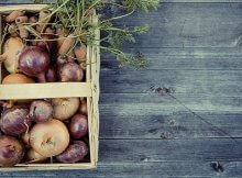 How to be an urban homesteader