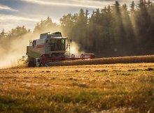 Sustainable agriculture vs. conventional agriculture