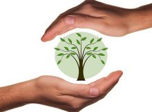Eco-friendly living tips