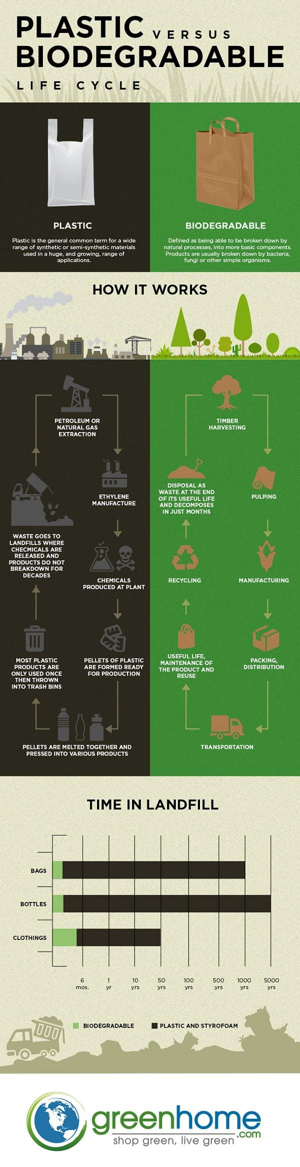 Biodegradable alternatives to plastic